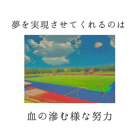 陸上の画像(プリ画像)