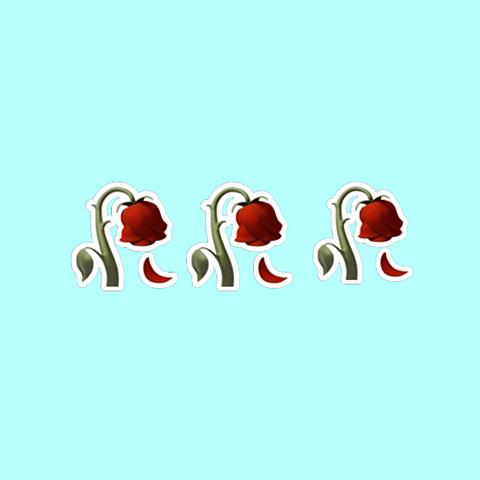 バラ薔薇ばらフォローイイね嬉しみの画像(プリ画像)