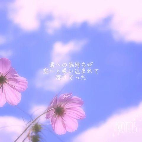 〜恋愛ポエム〜保存はいいね〜の画像(プリ画像)
