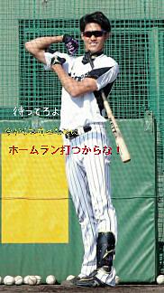 阪神タイガースの画像(プリ画像)