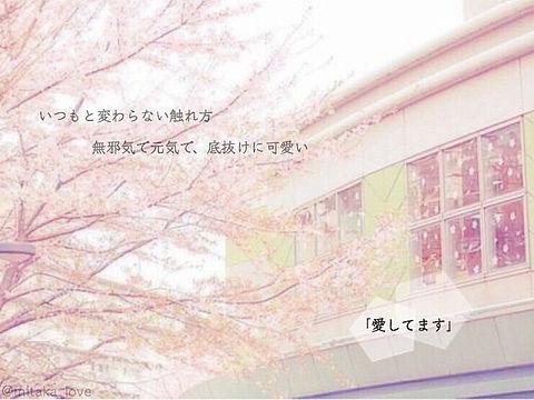 ワケあり生徒会の画像(プリ画像)
