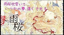 雨桜の画像(プリ画像)