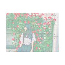 ___009の画像(プリ画像)