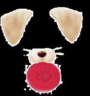snow 犬の画像(プリ画像)