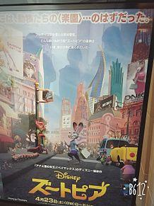 ディズニーの画像(ファインディング・ドリーに関連した画像)