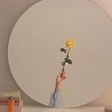 薔薇の画像(薔薇/バラに関連した画像)
