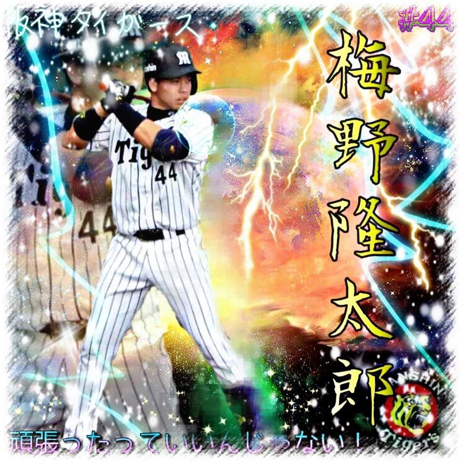 梅野隆太郎の画像 p1_2