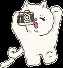 ฅ•ω•ฅの画像(猫 量産型に関連した画像)