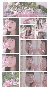 保存→ぽちの画像(かわいい/ゆるふわ/パステルに関連した画像)