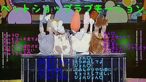 ペットショップラブモーションの画像(プリ画像)