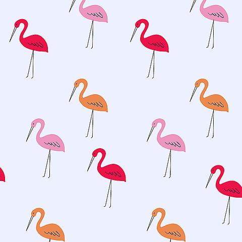 フラミンゴの画像(プリ画像)