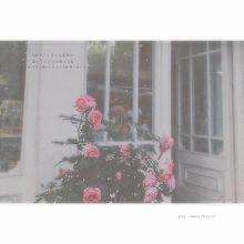 back number/クリスマスソング 🔍で画像🆙の画像(BACKに関連した画像)