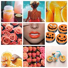 オレンジ色の画像(パンプキンに関連した画像)