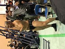 新日本プロレスの画像(オカダ・カズチカに関連した画像)