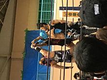 新日本プロレスの画像(オカダ カズチカに関連した画像)