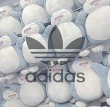 カビゴン&adidas プリ画像