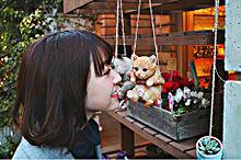 みり愛♡の画像(白い猫に関連した画像)