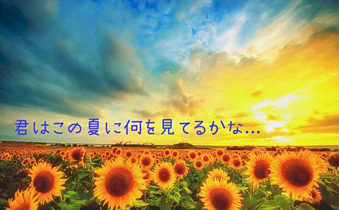 夏の恋の画像(プリ画像)
