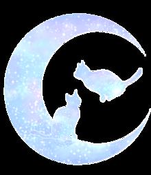 プロフ・詳細へ!の画像(猫 おしゃれに関連した画像)