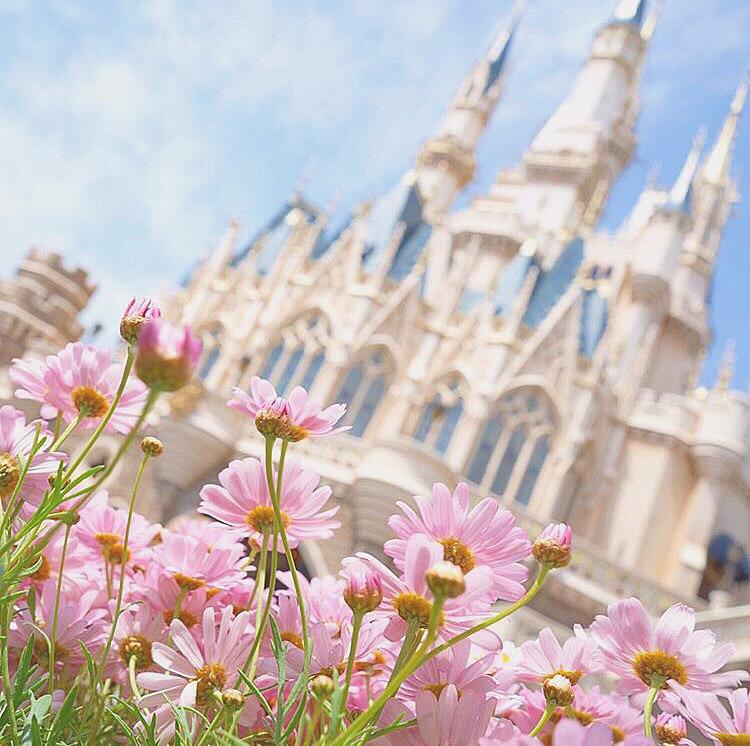 お花とシンデレラ城