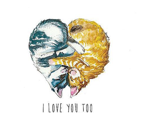 I LOVE YOU TOOの画像(プリ画像)