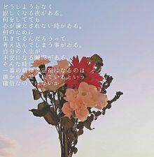 かわよきの画像(バラ 花束に関連した画像)