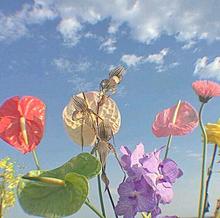 かわよきの画像(#恋愛/恋に関連した画像)