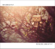 明日は晴れますか?の画像(可愛い/かわいい/カワイイに関連した画像)