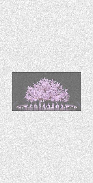 滝沢歌舞伎の画像(プリ画像)