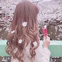 girlの画像(量産型ヲタクに関連した画像)