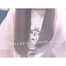 . 17の画像(あかりのばくなんふぇす!に関連した画像)