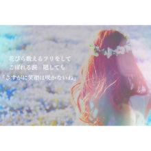 コイサイテハナ*の画像(Sasakure.Ukに関連した画像)