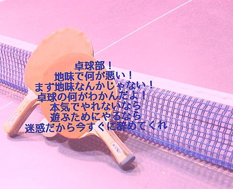 卓球の画像 プリ画像
