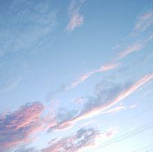 ピンク色の空が好きの画像(ピンク色に関連した画像)