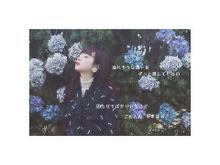 Flower / 秋風のアンサーの画像(恋/恋愛/片思い/片想いに関連した画像)