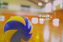 リクエスト‼イイネ、コメント、リク、フォロ-待ってます☺️💕の画像(バレーボール/バレーに関連した画像)