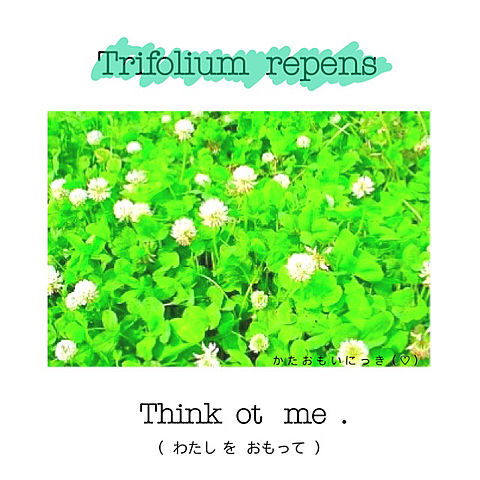 Think  ot  me  …   ⛅️の画像 プリ画像