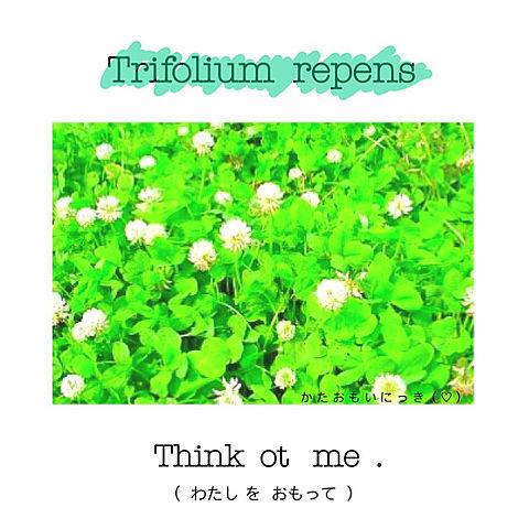 Think  ot   me  … ⛅️  2の画像 プリ画像
