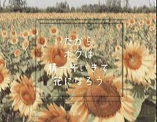 花 ORANGE RANGE 歌詞画像の画像(泣けるに関連した画像)