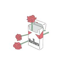 薔薇と煙草の画像(たばこに関連した画像)