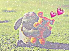 保存☞ゆざふぉ&ぽちっの画像(おしゃれ/シンプルに関連した画像)