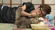 櫻井さんの可愛いすぎる一面の画像(プリ画像)