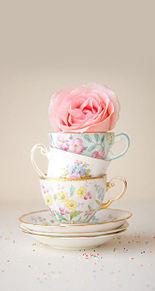 teaの画像(プリ画像)