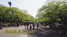 上野の画像(上野に関連した画像)