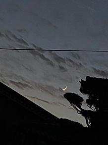 夜の月 プリ画像