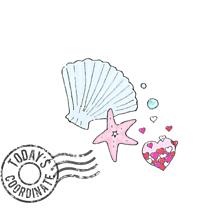 貝殻などもろもろの画像(すこに関連した画像)