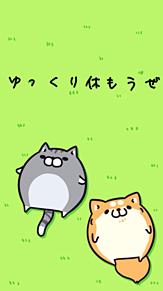ボンレス犬と猫の画像(プリ画像)