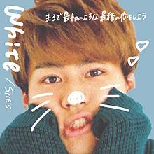 Shintaro  >> Whiteの画像(SHINTAROに関連した画像)
