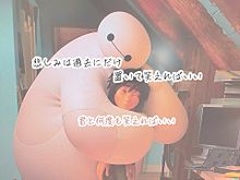 笑顔の花/Goose houseの画像(齊藤ジョニーに関連した画像)