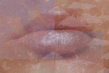 くちの画像(唇に関連した画像)